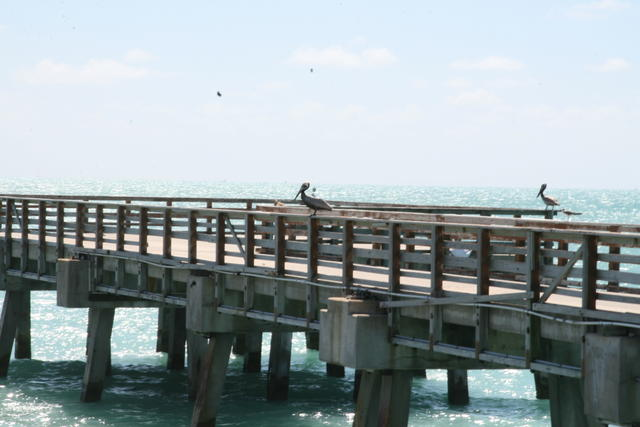 south beach fishing pier miami